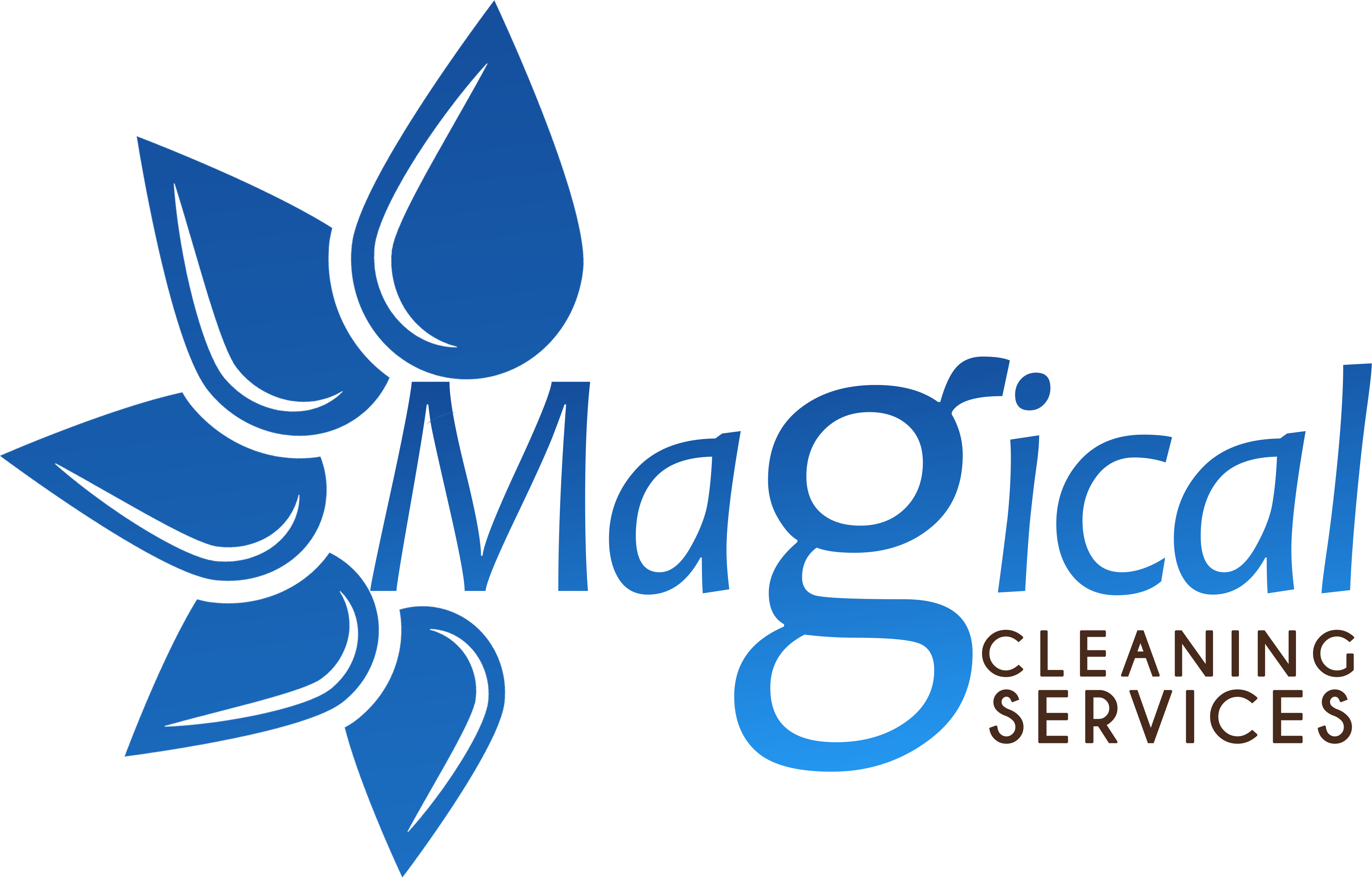 Magical Cleaning Service